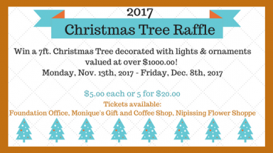 2017 Christmas Tree Raffle